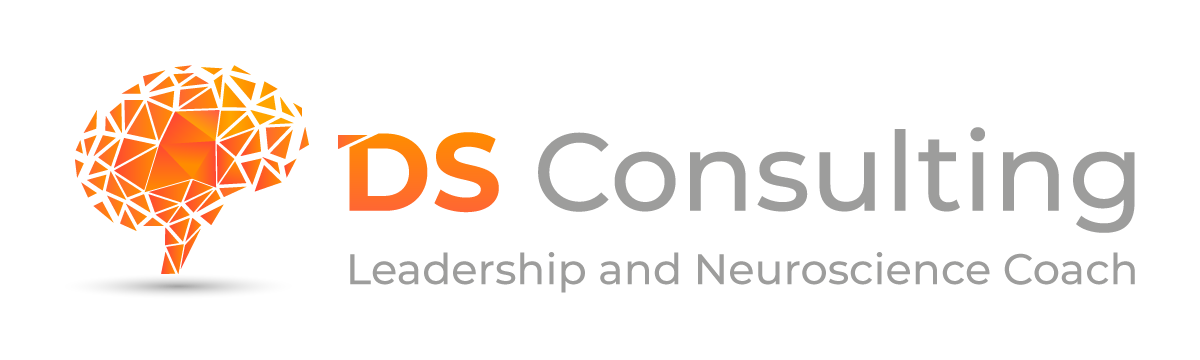Reach New Heights with DS Consulting Homepage